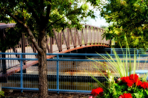 202 Aug 20/11 A foot bridge across Broadmoor Lake in Sherwood Park taken for World Photography Day.