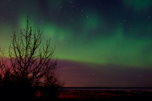 100 Apr 14/11 A couple of nights ago we had a spectacular showing of Northern Lights.