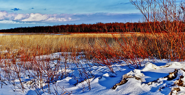 "102 Apr 16 2011  This is a pano of the ""lake"" I go to every few weeks.  It's where I go to shoot Northern Lights, get trucks stuck and look for wildlife.  Last night I decided to try a pano because the setting sun made everything look so pretty.  This photo is not pretty much SOOC.  I took 10 shots, merged them in CS4, cropped to get rid of my shadow and the unevenness, tweaked the levels, downsized as 34 mb was too large to deal with, applied NIK noise and sharpening programs, then used NIK's HDR which brought out a little more of the red and blues as well as defining the clouds.  Enjoy your weekend."