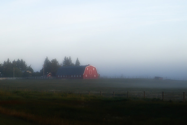 223 Sep 13/11  This is a scene from the highway, in the fog, through the window, from my drive to work.
