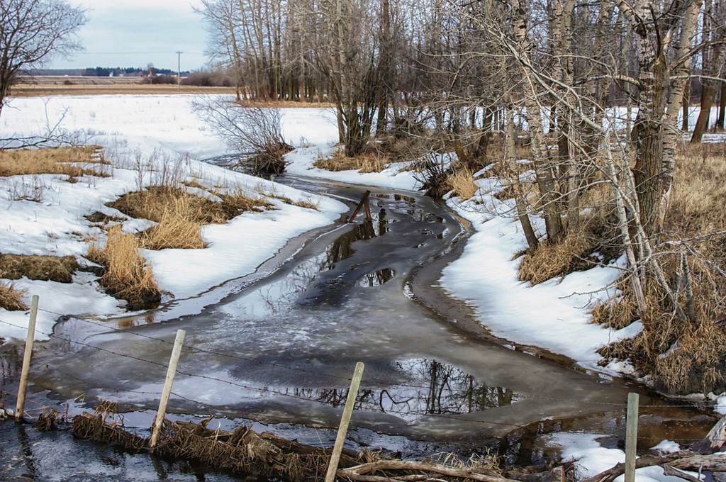 088 Mar 29/12 Springtime in rural Alberta