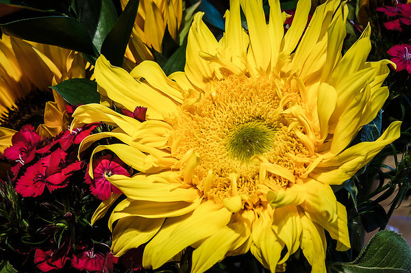 102 Apr 26/12<br /> <br /> A partial glimpse of a bouquet received at work yesterday.