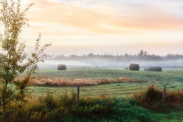 145 Sep 26/12 Morning fog.<br /> <br /> Critique always welcome.