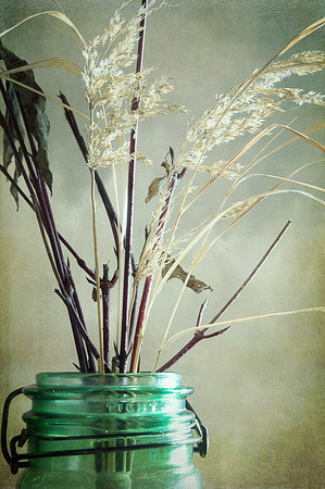 "024 Jan 24/12  Texture Tuesday and my ""new"" little green jar.<br /> <br />  <a href=""http://susanwildephotography.blogspot.com/"">http://susanwildephotography.blogspot.com/</a>"