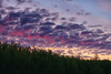 05/20/12 Morning sky
