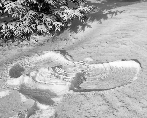 016 Jan 16/12 My Snow Angel<br /> <br /> A few inches of snow and -26C, winter is now upon us.