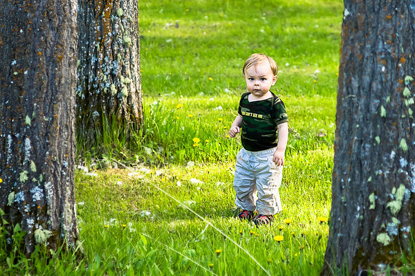 05/31/12 Camouflaged