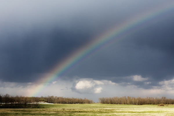 106 May 5/12 Prairie sky
