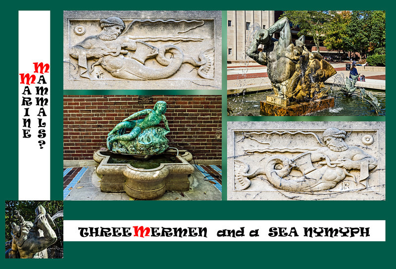 """Donna's Alphabet Challenge: M (October 6, 2013)<br /> <br /> Perhaps I should have labeled this """"Mythical Marine Mammals"""".  I was in the mood for something a little less serious than last Sunday's Libraries montage.<br /> <br /> DP269-2013  Posted October 6; created October 5 from photos taken October 2.<br /> <br /> Each of the individual photos is of some work of art on the University of Michigan Central Campus.<br /> The two limestone bas relief panels are works of Ulysses Ricci, who carved many other architectural details on UM buildings.  These flank the west entrance to the C. C. Little Building, which was originally named the Medical Building.  Hence the medical symbolism in the carvings.  They date to 1925.<br /> The bronze fountain is of Father Triton with his children.  It is by Carl Milles, titled 'Sunday Morning in Deep Waters', ca. 1940.  Triton conventionally is depicted with a fish tail, and thus qualifies as a merman as well as a god.<br /> The ceramic fountain is in the courtyard of the Michigan League.  It was designed by Gerald Mast and executed by Clivia Morrison ca. 1938, and bears the title 'Sea Nymph'.<br /> <br /> (This photo lives here:  <a href=""""http://arctangent.smugmug.com/Dailies/2013-A-Year-in-Photography/27598278_kp7rBx"""">http://arctangent.smugmug.com/Dailies/2013-A-Year-in-Photography/27598278_kp7rBx</a> )"""