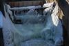 Dam Near Frozen