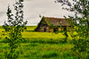 199 Aug 1/13 Little House on the Prairie