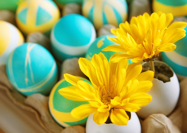 090 Mar 31/13  A very happy Easter to all.
