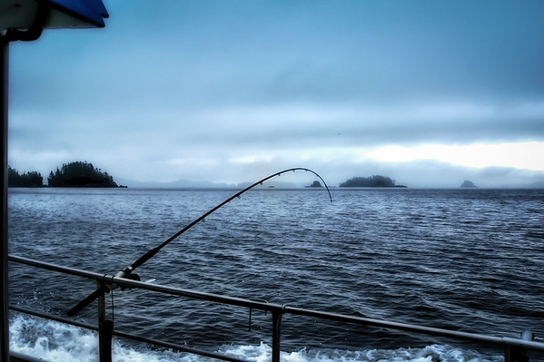2017-07-27 Gone fishing