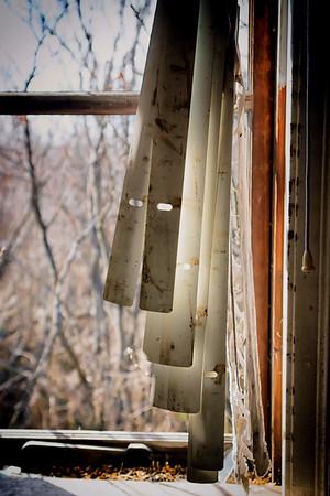 The window of escape