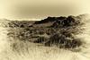 Monotone Desert