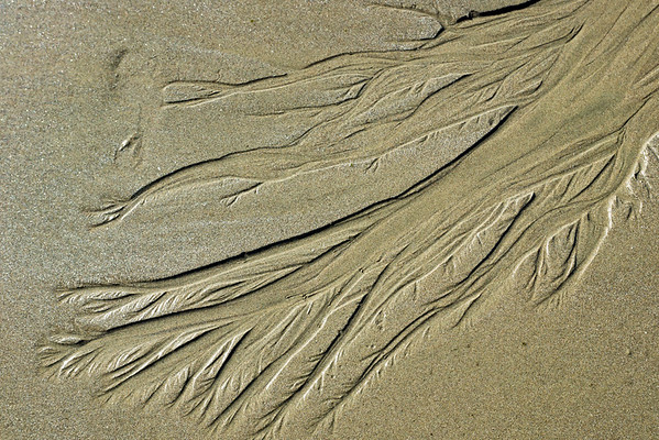 183/365 Sand