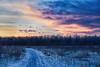 12/365 Sunrise