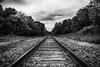 130/365 Tracks