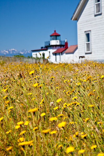 #204 - Lighthouse Retrospective