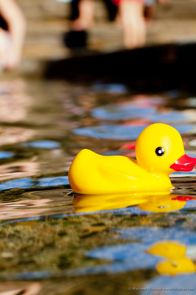 #216 - Rubber Ducky