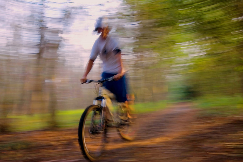 6PM on the quiet nature trail<br /> at Magnolia Gardens: Lights (sweet), <br /> Camera (yup), and action!<br /> <br /> motion blur by ginger