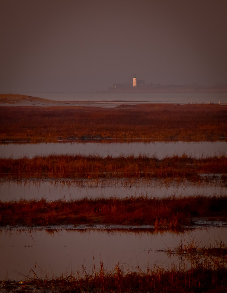 Yarmouth, Ma<br /> Sandy Neck Light House from across the  marsh and foggy harbor. Gotta love a 450mm! The lighthouse is at least a mile away, across a whole lot of water.