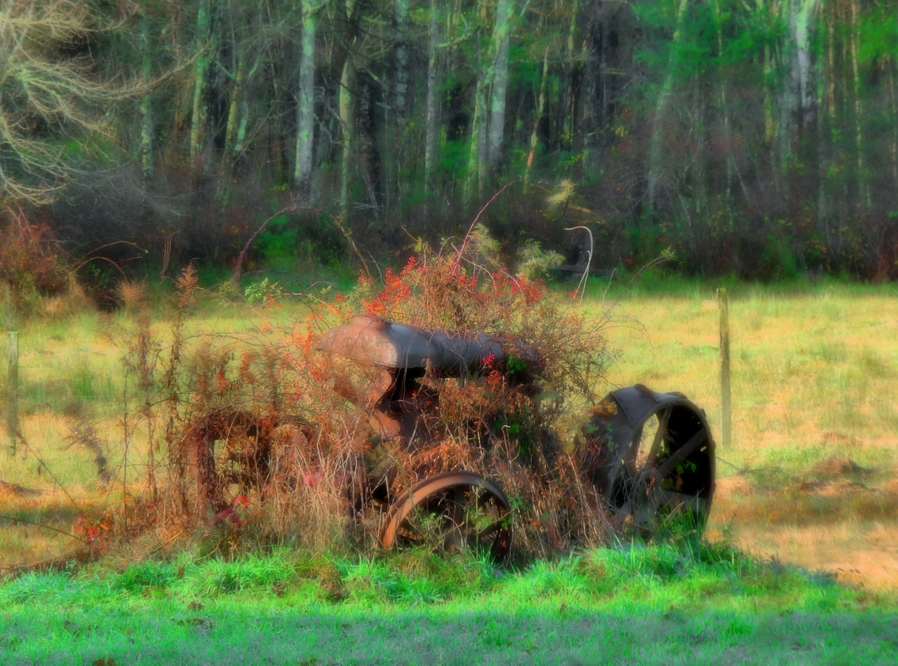 For Sale....hardly used tractor. Gets great mileage. Purrs like a kitten. Weeds not included. All reasonable offers refused.