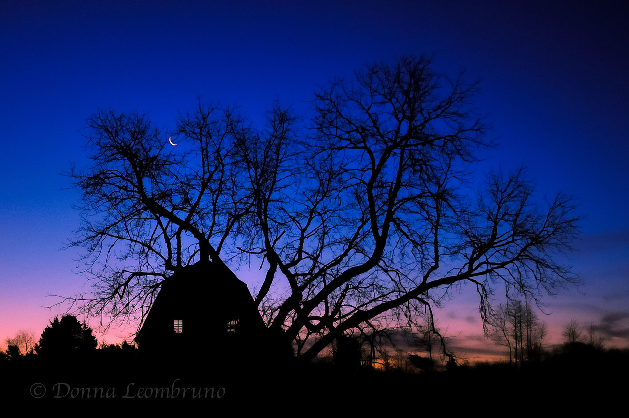 I've had my eye on this barn/tree combination since I first noticed it a few weeks ago. Yesterday, when I was on my way to shoot a new sunrise spot, I noticed the sliver moon. I wondered if by any chance, it just might be lined up with the barn and the tree. I decided to take the back road and check it out. Boy, was I happy I did. It was the shot I'd been holding out for. This 15 sec exposure was shot about an hour before sunrise, basically in the dark. I used an old wooden fence post as a tripod.