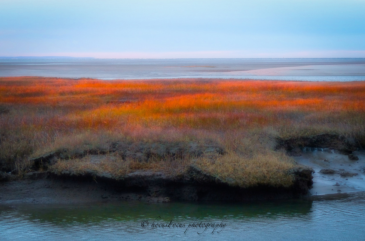 Yarmouth, Ma <br /> Cape Cod<br /> <br /> This was shot just as the sun was setting. I love the way the marsh grasses are illuminated when the sun hits them sideways.