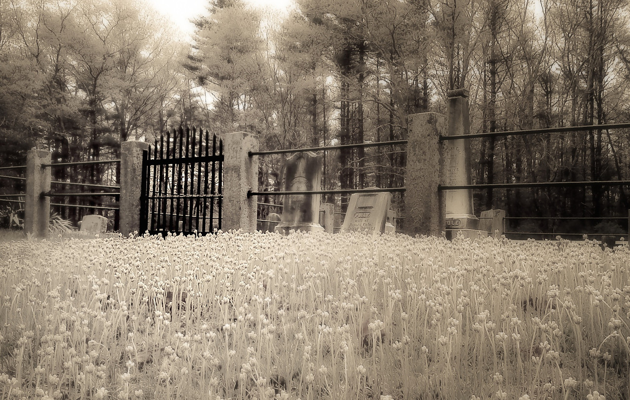 This cemetery is on the route I take when I go for a long ride on my scooter. It's got good enough creep factor that I thought it was worthy of breaking out the camera for it. I had fun playing with this image in snapseed and then LR. I tried to keep the visual path leading to the gate in sharper focus than the rest of the image.