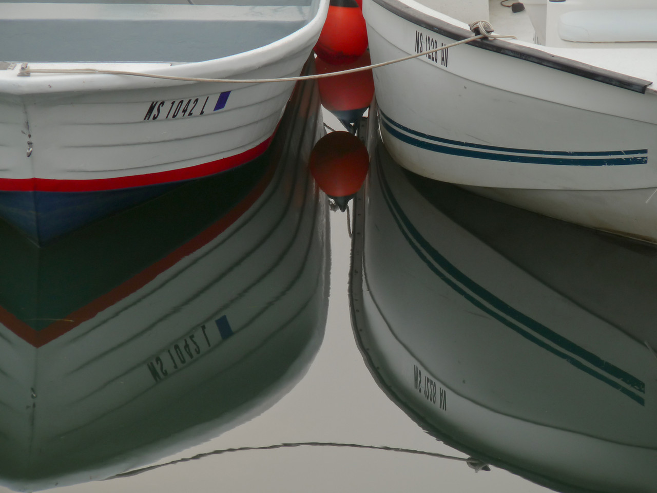 This was taken in Plymouth Harbor on a very colorless, foggy morning.