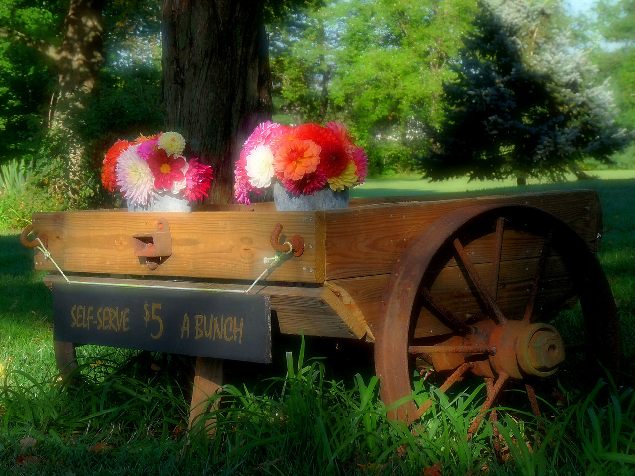 The roadside flower cart at Cotley Brook.