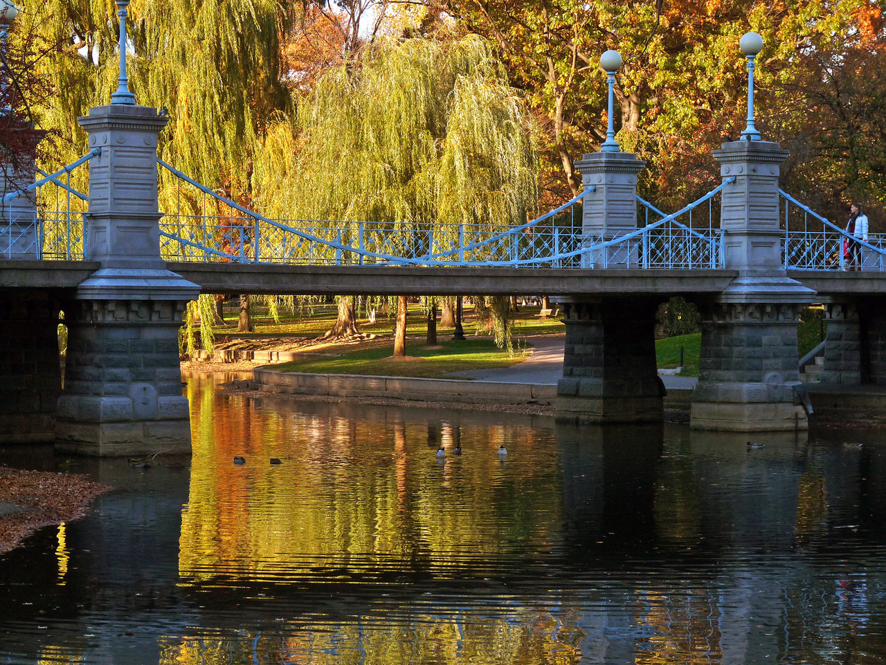 Boston Public Gardens in the fall.
