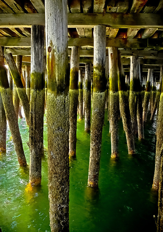 Under the Boardwalk<br /> I took a boat from Plymouth to Provincetown Thursday. While all the folks were disembarking, I got a little sidetracked. I loved the colors and lines and textures under there.<br /> Unfortunately, I worked until well after dark last night and missed the moon rise. I'm hoping to catch it tonight.