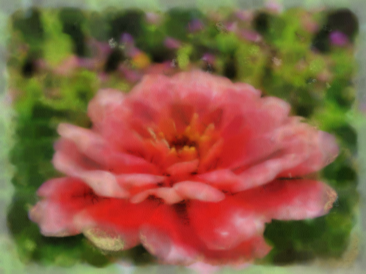 I've been sick the past few days and haven't even had my camera out. Dabbling is about all I have the energy for. I wanted to create something that cheered me up so, here you have it.  A worked pink zinnia. Hope you're all well.