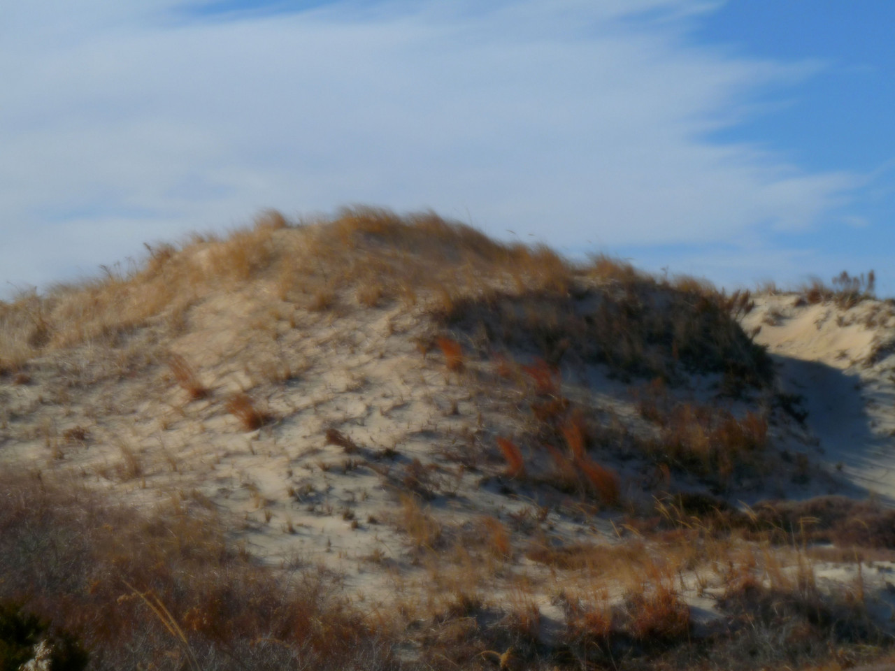 Sand dunes at Horseneck Beach, Westport , Ma<br /> Why Kelly and I chose the coldest day of the winter so far to go to the beach.....I'm just not sure. It was 12 degrees with 45 mph winds! The sand was face-whipping and the winds so strong that it was actually hard to stand up and shoot. Very fun afternoon of shooting!