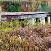 Nov 6 - small lake dock