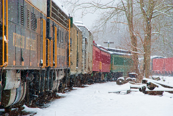 """Mar 6 - This is a """"parked"""" tourist train in West Virginia waiting for the tourist season to begin.  I loved the colors of the cars and the effect the falling snow had on the image."""