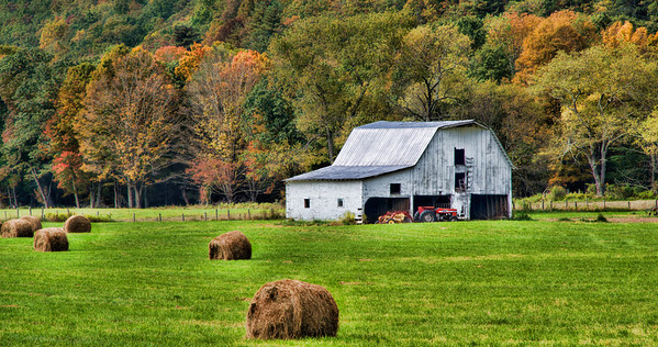 """Oct 23 - Country Fall in West Virginia #2<br /> <br /> This photo is another image of the scene I posted in my Daily Gallery on Oct 10, hence the """"#2"""" in the caption.  I love the freshly mowed green hay field against the white barn with the fall colors on the trees in the background.  I think the red tractor is a plus also."""