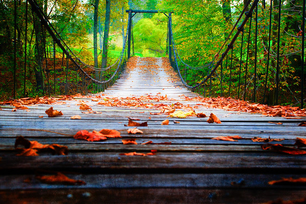 Oct 14 - Wooden Swinging Bridge