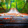 Oct 14 - Fallen leaves on a swinging bridge