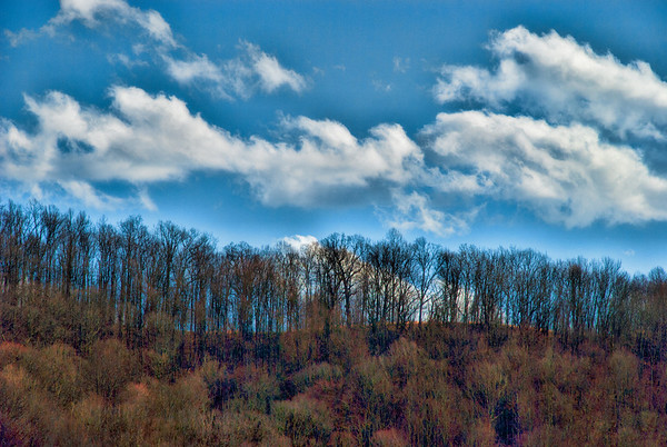 Mar 21 - Ridge line in a hardwood forest awaiting Spring time