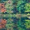 Oct 29 - Pond Reflections