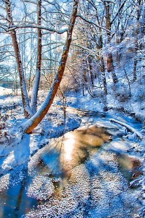 Jan 24 - Winter Creek