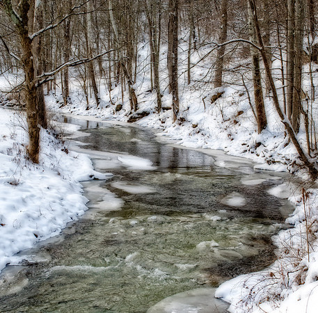 Feb 1 - Cold Creek