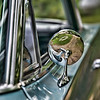 """Oct 14 - Impala Side Reflections<br /> <br /> Another """"piece""""  of the 64 Chevy Impala.  Thanks for the comments yesterday on the tail light image!  I can't believe how some in the community (Rick) could tell right away the year and make from just seeing the tail lights!"""