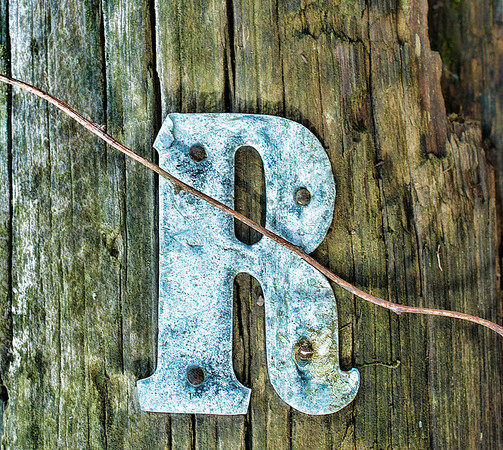 """May 18 - The Letter """"R"""" for the daily community Sunday challenge<br /> <br /> I found it very difficult to find something in the shape of the letter """"R""""!  So this is probably cheating a little - I saw this on an old electric pole that was laying in a field.<br /> <br /> I didn't post an image yesterday, so I would like to thank everyone for all the comments on my Morning Light at Mammoth Hot Springs image I posted Friday - they are all appreciated!!"""