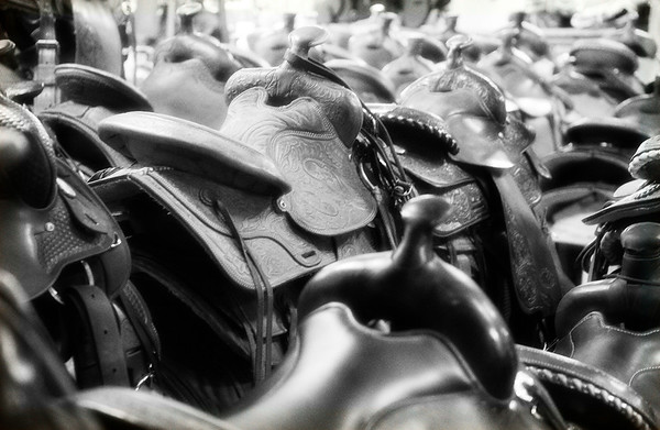 July 16 - A Size for Every Seat<br /> <br /> Image taken inside a saddle shop - there were all kinds of sizes and styles<br /> <br /> Thanks so much for your comments on my row boat image I posted yesterday - that nearby lake provides me with many a photo opportunity.