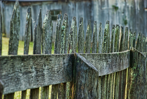 April 15 - Aging Picket Fence