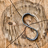 "May 25 - The Letter ""S"" for the daily community Sunday alphabet challenge<br /> <br /> This is called an ""S"" iron and is used in the timber/log industry.  If it appears that the log may start to split after it's cut to a specified length, an ""S"" iron can be used to keep it from splitting further.  This is done prior to shipping the log for processing."